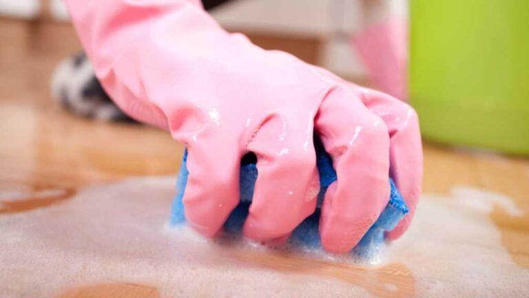 8 Razones por las que necesitas una empleada doméstica